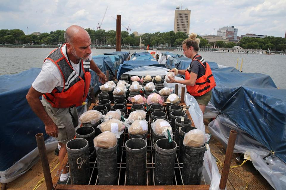 Pyrotechnicians Pat Bosco, left, and Lauren Grucci of Fireworks By Grucci load 5-inch shells into mortars on a barge on th the Charles River on Friday.